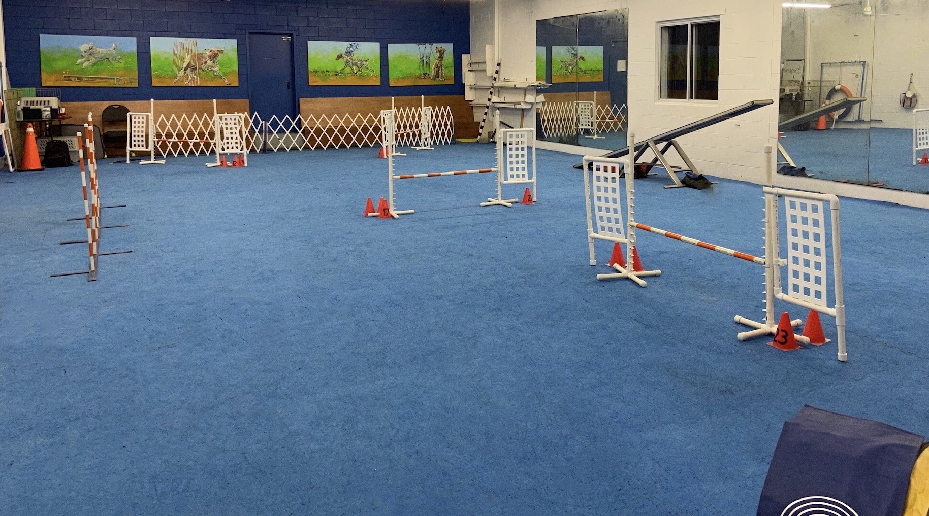 Salle de formation du club canin Chomedey